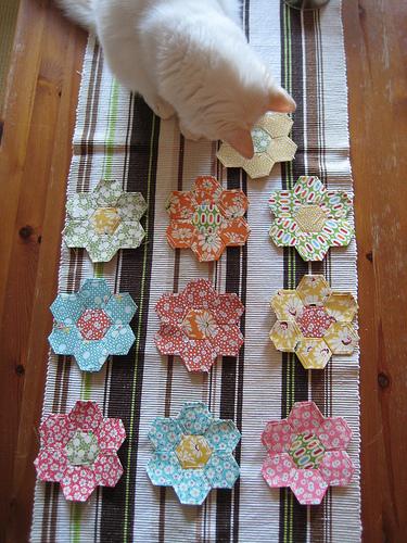 Gert's flower garden 3991965575_fc10aff252