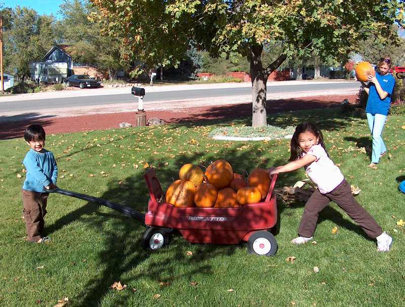 Pumpkins_in_wagon_2